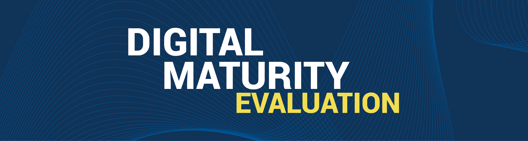 Digital Maturity Evaluation